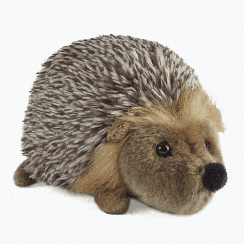 an image of a plush hedgehog soft toy