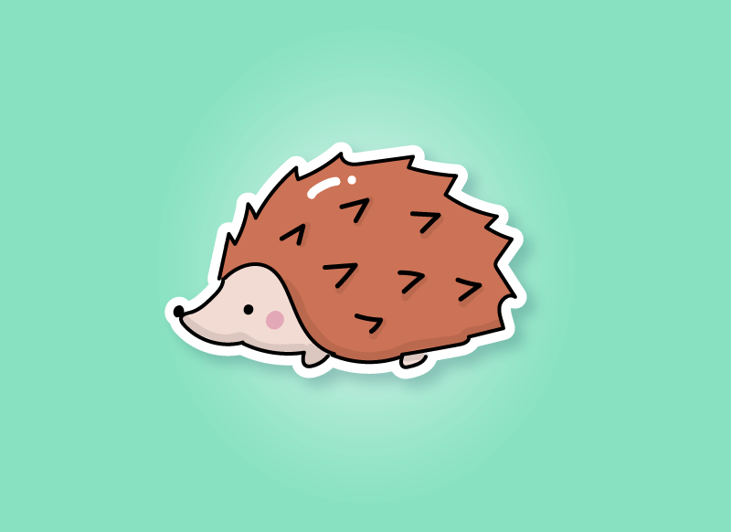 hedgehog gifts article header image