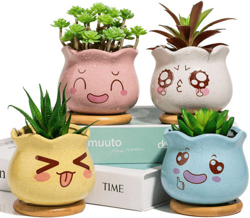 an image of mini ceramic plant pots with bamboo trays - one of our suggestions of cute cactus gifts