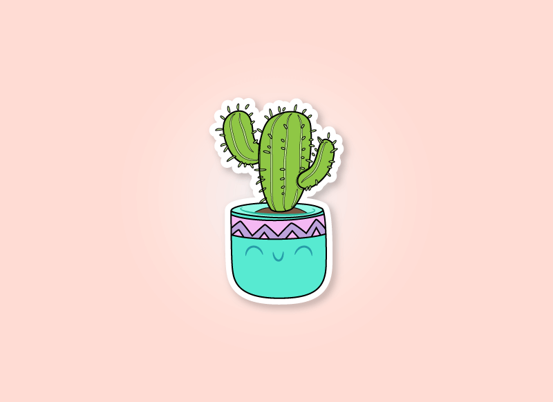 cactus gifts article header image