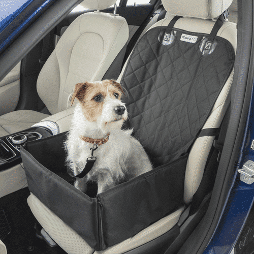 an image of a dog car seat cover