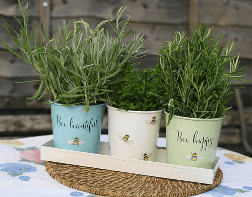 an image of a set of three themed planter pots with tray
