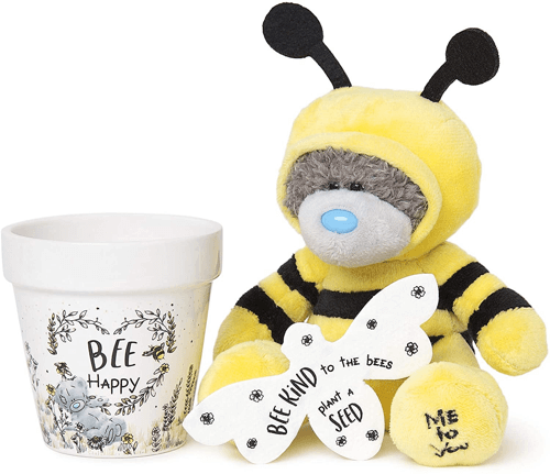 an image of a bumble bee wildflower gift set