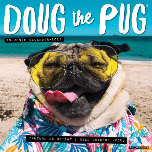 an image of a doug the pug wall calendar - one of our picks of pug gifts for him or her