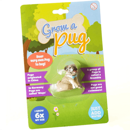 an image of a grow your own pug toy - one of our picks of pug novelty gifts