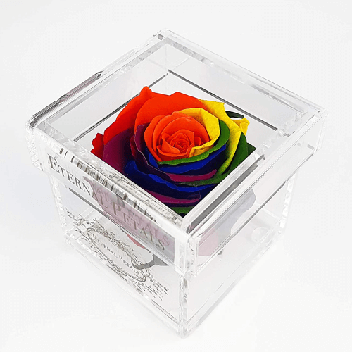 an image of an eternal petals rose gift idea - one of our picks of rainbow thank you gifts